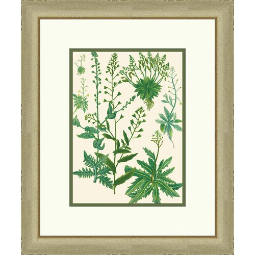 Emerald Foliage ll Framed Graphic Art