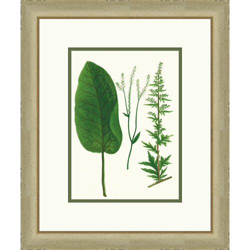 Emerald Foliage lV Framed Graphic Art