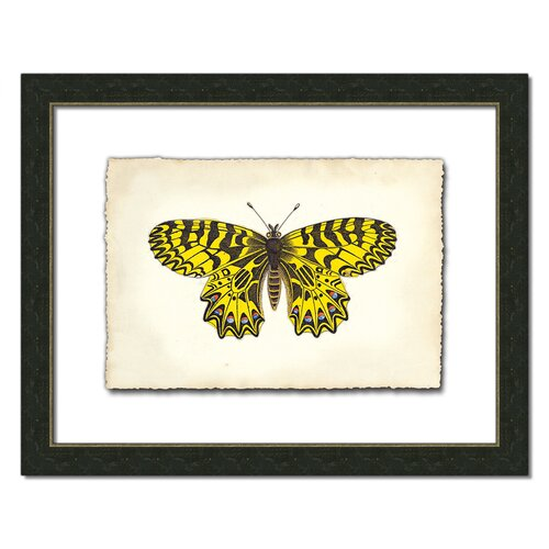 Butterfly I Framed Graphic Art