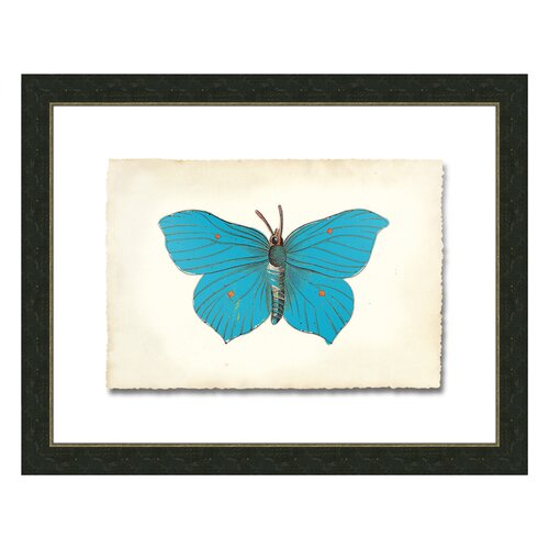 Butterfly lll Framed Graphic Art