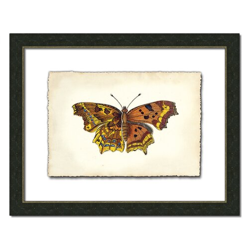 Butterfly Vl Framed Graphic Art