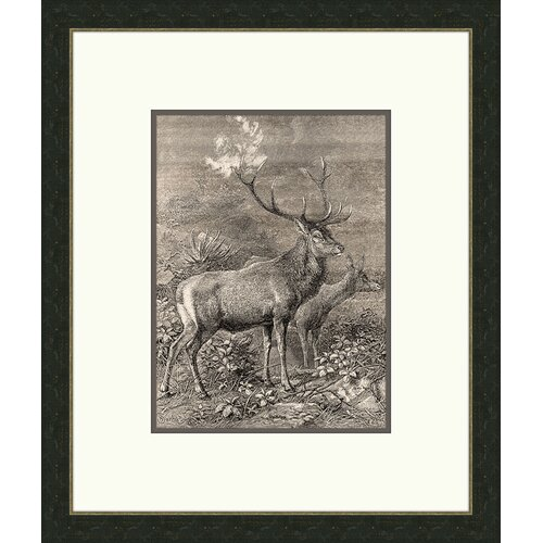 Forest Dwellers lll Framed Graphic Art