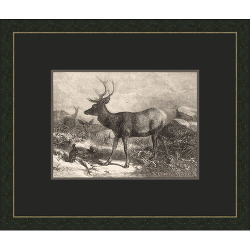 Forest Dwellers VII Framed Graphic Art
