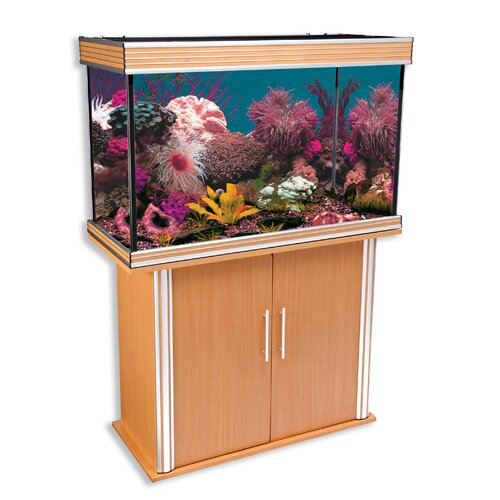 Penn Plax 58 Gallon Aquarium Tank