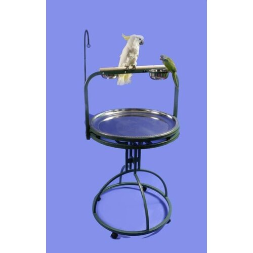 Deluxe Bird Play Stand with Wood Perch