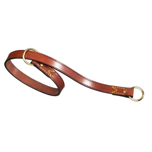 PetEgo Classic Leather Choke Dog Collar