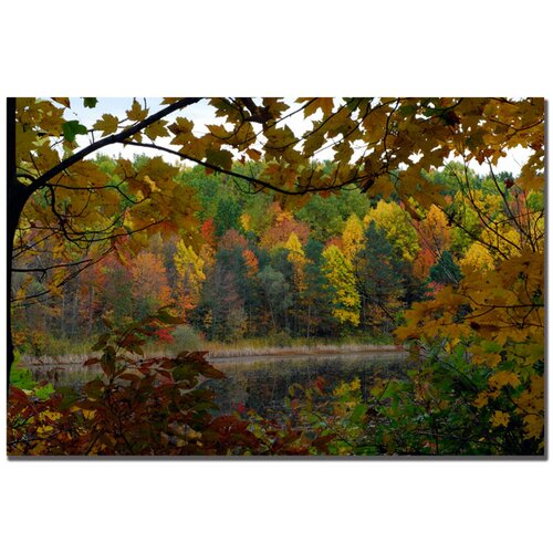 Trademark Fine Art 'Full Color Fall' by Kurt Shaffer Photographic Print on Canvas