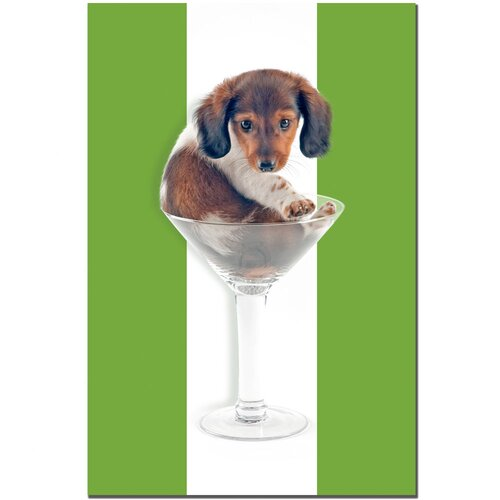 Trademark Fine Art Wienie Tini by Gifty Idea Greeting Cards And Suchon Photographic Print on Canvas