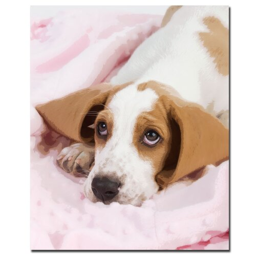 Trademark Fine Art Basset Pup in a Blan by Gifty Idea Greeting Cards And Suchon Photographic Print on Canvas