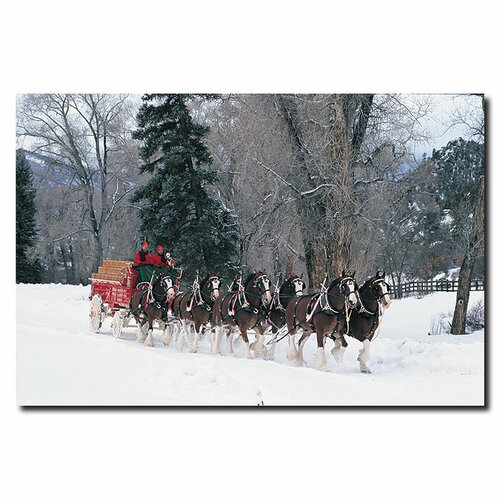 Trademark Fine Art Clydesdale Snowing in Forest Photographic Print on Canvas