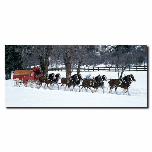 Trademark Fine Art Clydesdale Photographic Print on Canvas