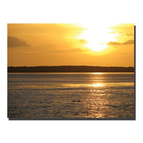 Trademark Fine Art Dolphin Sunset by David Photographic Print on Canvas