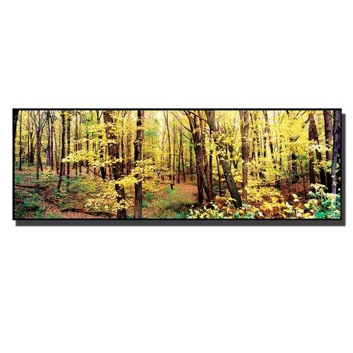 Trademark Fine Art 'Trees' by Preston Photographic Print on Canvas