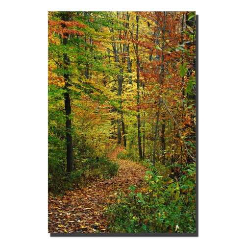 "Trademark Fine Art ""Fall Trail"" by Kurt Shaffer Photographic Print on Canvas"
