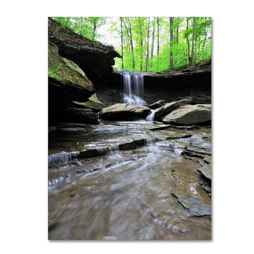 Trademark Fine Art 'Blue Hen Falls in Spring' by Kurt Shaffer Photographic Print on Canvas