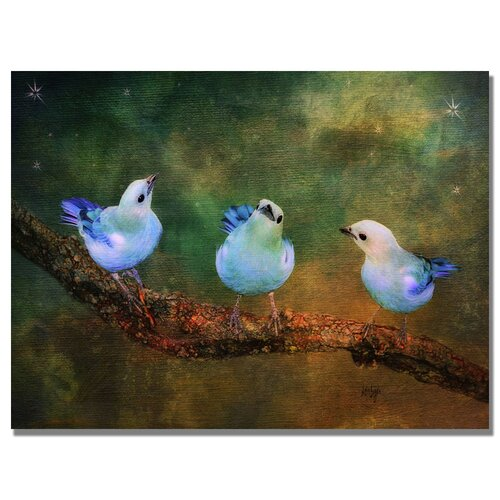 Trademark Fine Art 'Three Little Blue Birds' by Lois Bryan Photographic Print on Canvas