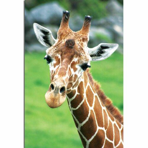 'Giraffe Hello' by Patty Tuggle Photographic Print on Canvas