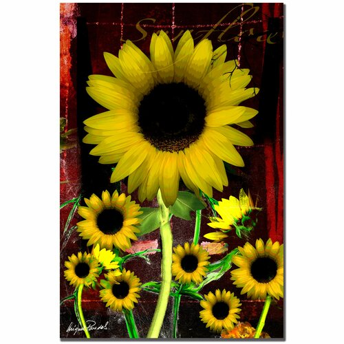 Trademark Fine Art 'Sunflower III' by Miguel Paredes Painting Print on Canvas