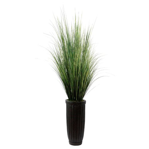 Laura Ashley Home Realistic Grass in Decorative Vase