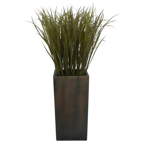 Laura Ashley Home Tall High End Realistic Silk Grass in Square Tapered Planter