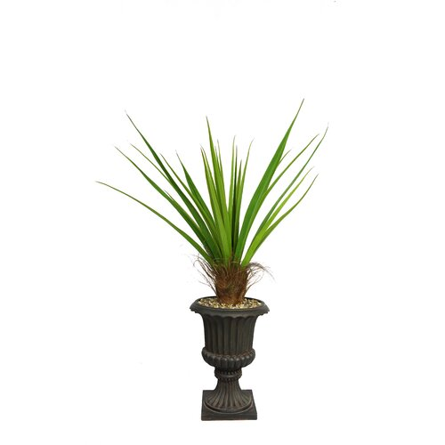 Tall Agave Floor Plant in Fiberstone Urn
