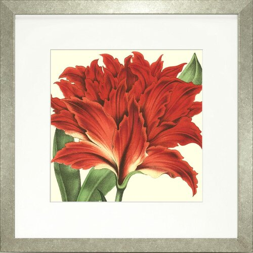 Floral Living Tropical Vision V Framed Graphic Art