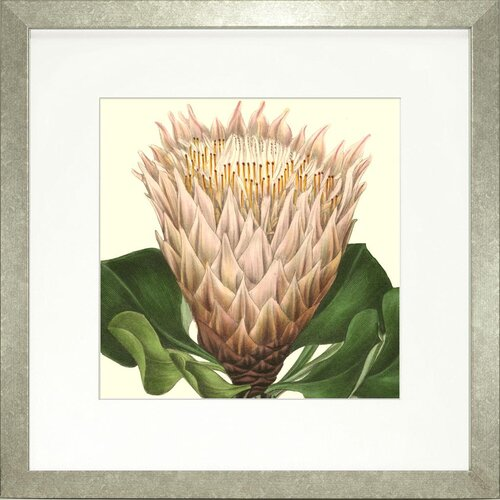 Floral Living Tropical Vision VI Framed Graphic Art
