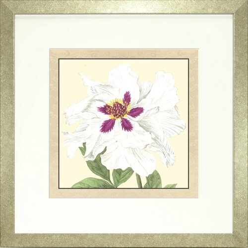 Floral Living Peony 4 Framed Graphic Art