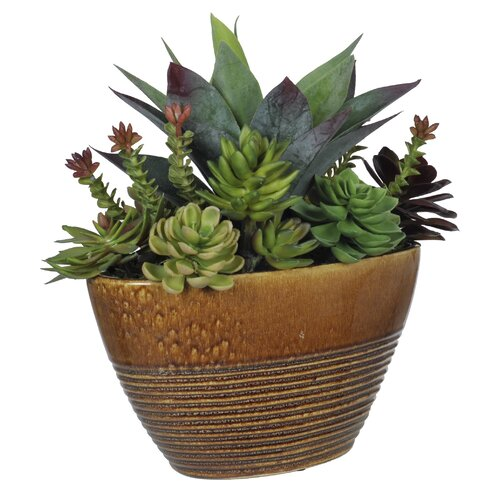 House of Silk Flowers Inc. Artificial Succulent Garden Desk Top Plant in Ridged Planter