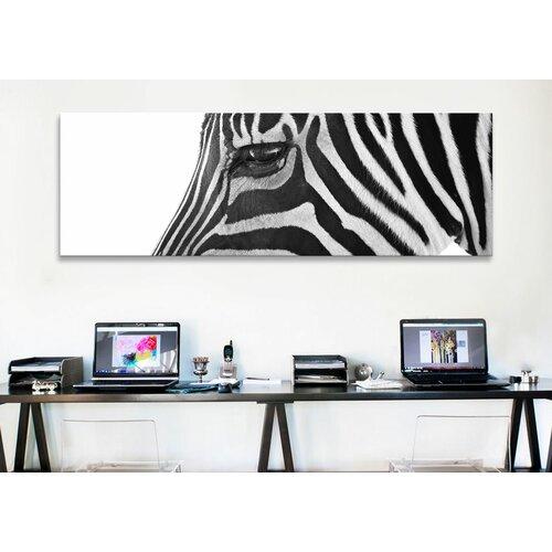 iCanvasArt Panoramic 'Ignoring Zebra' by Bob Larson Photographic Print on Canvas