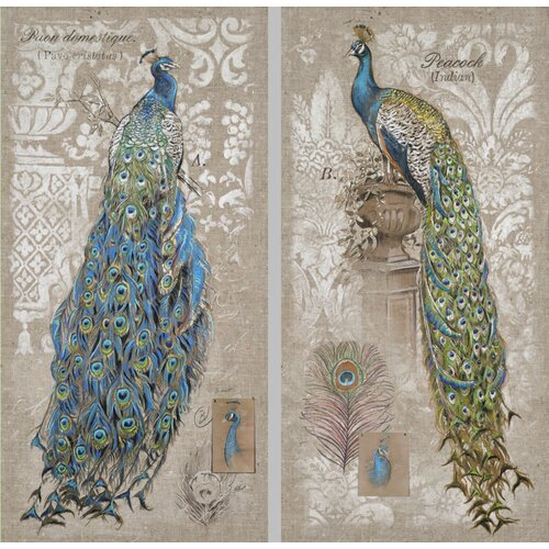 Peacock Indoor by Chad Barrett 2 Piece Graphic Art on Canvas Set