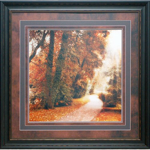 'Forest Light' by Jessica Jenney Framed Photographic Print