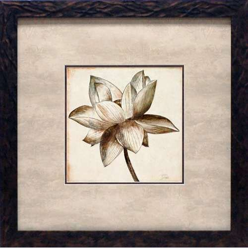 'Sepia Lotus I' by Patricia Pinto Framed Painting Print
