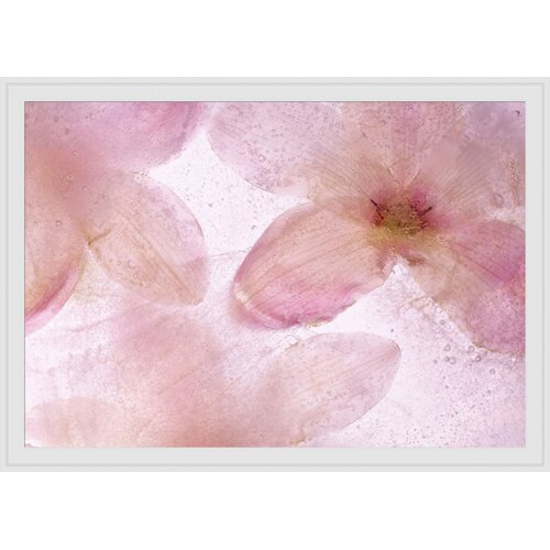Flores Congeladas III Framed Graphic Art