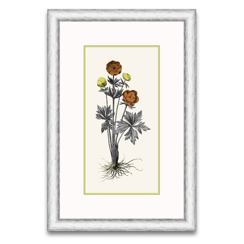 Floral Persimmon and Citriana I Framed Graphic Art
