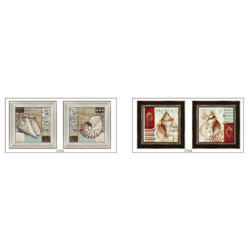 Ocean Shells 4 Piece Framed Graphic Art Set