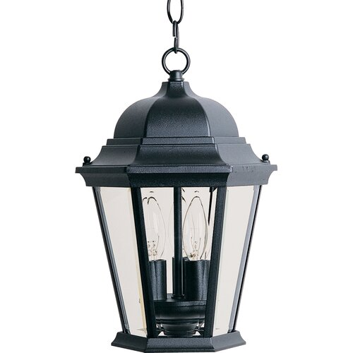 Wildon Home ® Wagner 3 - Light Outdoor Hanging Lantern