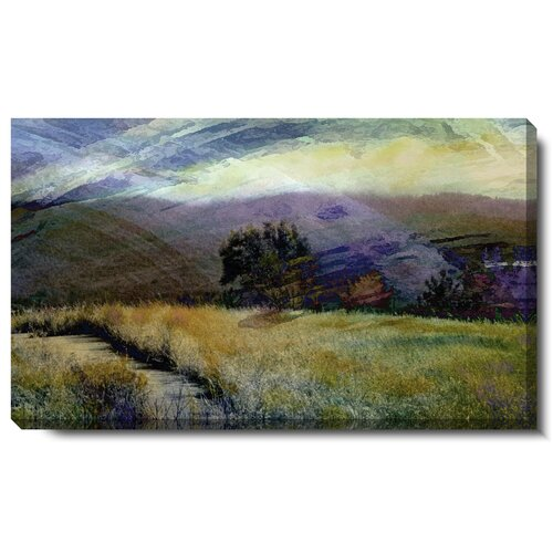 Sonoma Meadow Gallery Wrapped by Zhee Singer Painting Print on Canvas