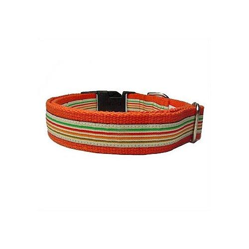George SF Super Stripe Cotton Dog Collar