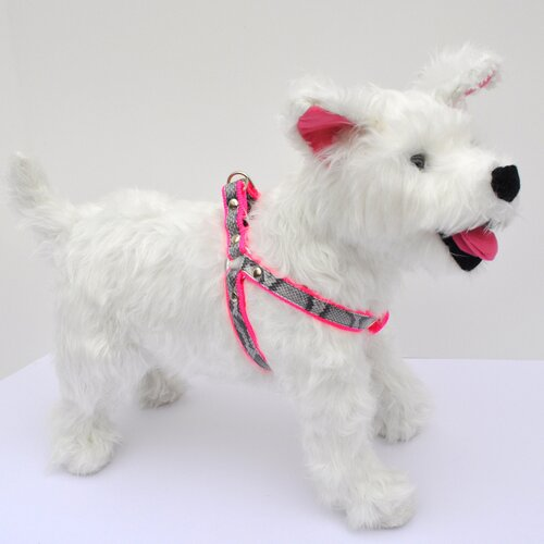 City Pooch Nylon Harness