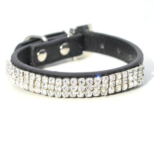 Bubba Dog Royal Pooch Collar