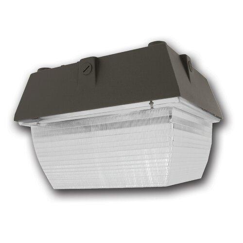 Medium Canopy Light Fixture with 100W M90/E Bulb