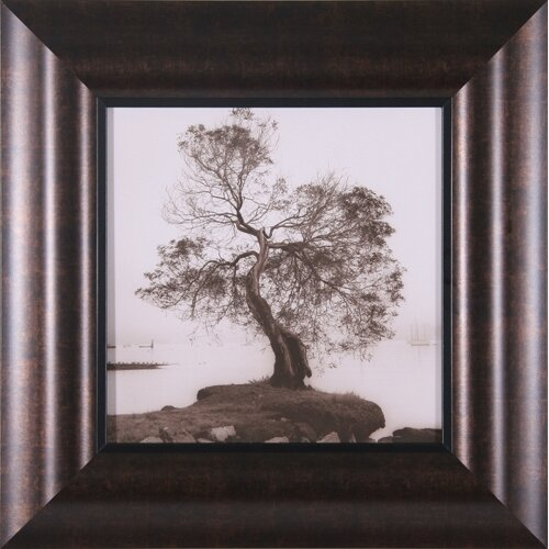 Coast Oak Tree Framed Photographic Print