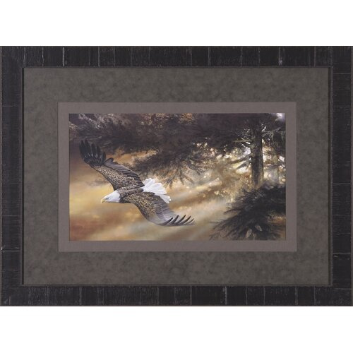 Art Effects Freedom by Duane Geisness Framed Painting Print