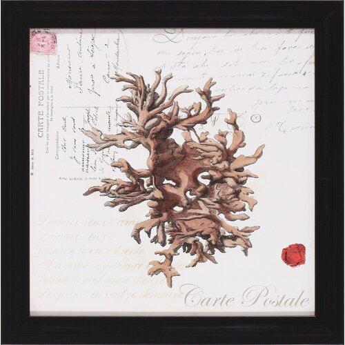 Small Romance du Mer III by Vision Studio Framed Graphic Art