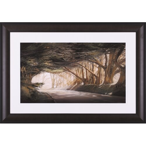 Art Effects Inside a Dream by William Vanscoy Framed Photographic Print