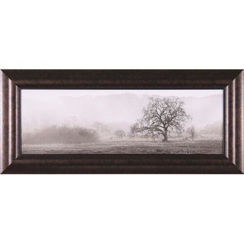 Meadow Oak Tree by Alan Blaustein Framed Photographic Print