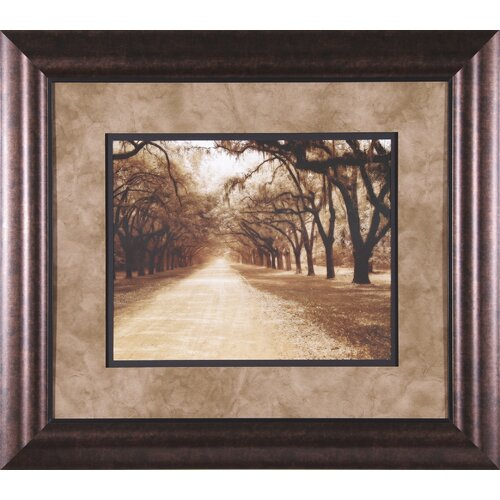 Art Effects Savannah Oaks II by Alan Hausenflock Framed Photographic Print
