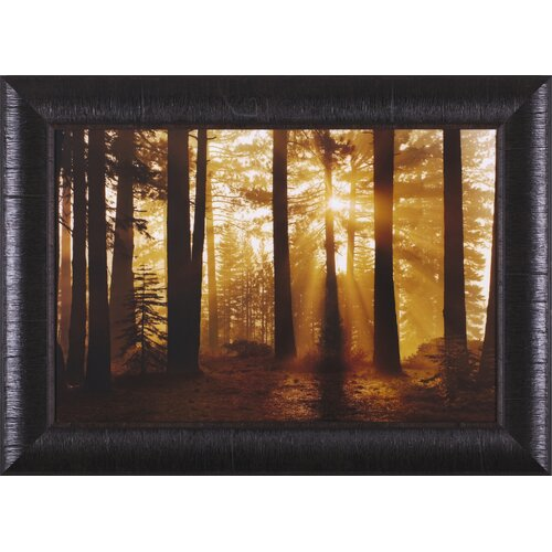 Tahoe Smoky Sunrise by Mike Jones Framed Photographic Print