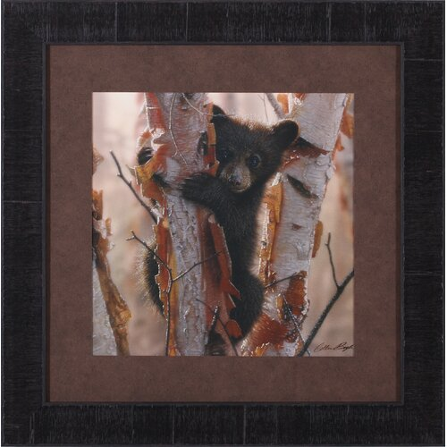 Art Effects Curious Cub II by Collin Bogle Framed Painting Print
